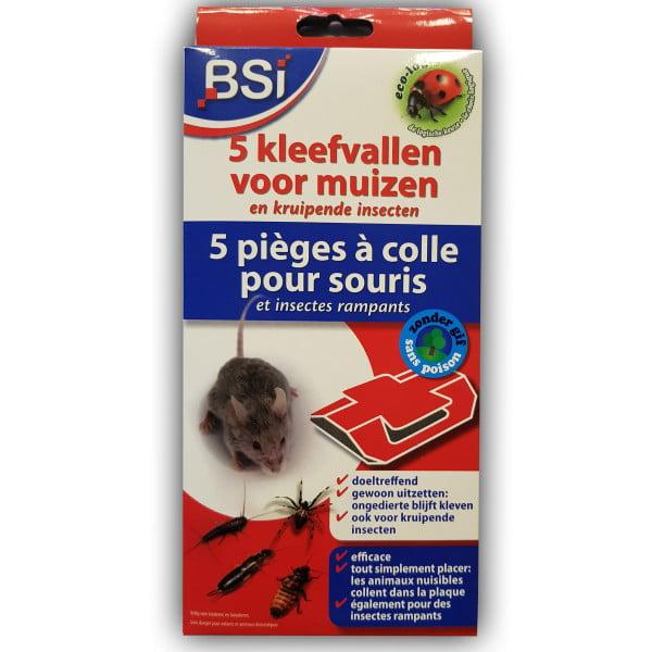 BSI kleefval voor muizen - 5 stuks
