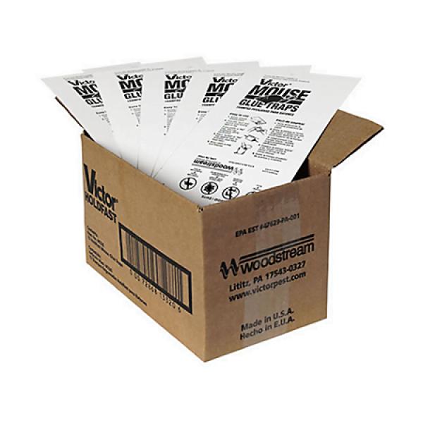 Victor muizen lijmplanken - Voordeel verpakking 72 stuks