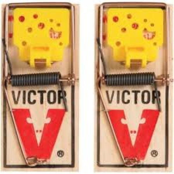 Victor houten muizenval - 2 stuks